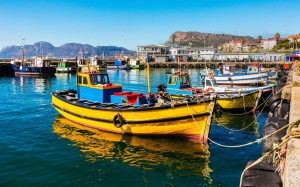 How To Start The Process To Immigrate To South Africa