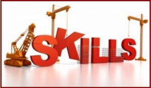 Quota and exceptional skills visas